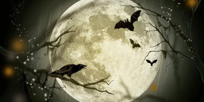 Los signos del zodiaco y la luna - Horoscopo-gratis.net